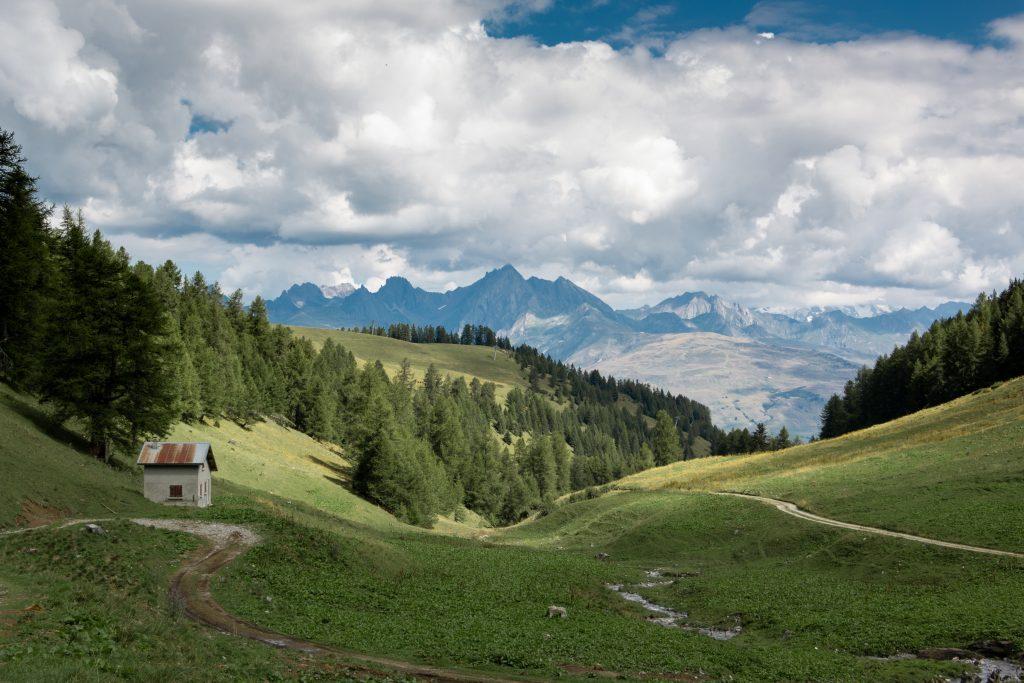 vue sur les montagnes en été